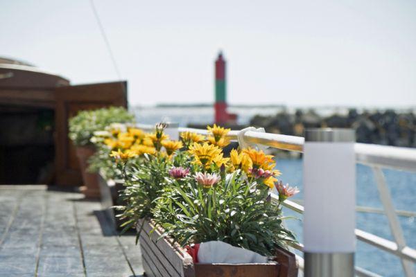 Athos Flowers on deck